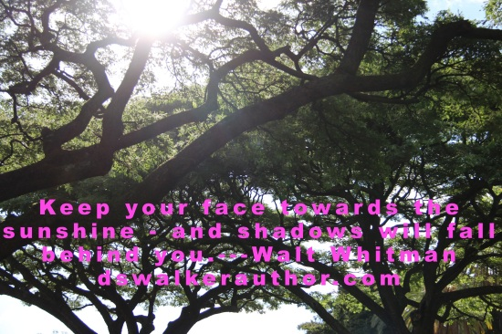 Keep your face towards the sunshine and shadows will fall behind you. ---- Walt Whitman