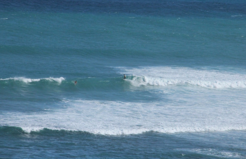 Summer swell makes Aloha Friday happy for surfers.
