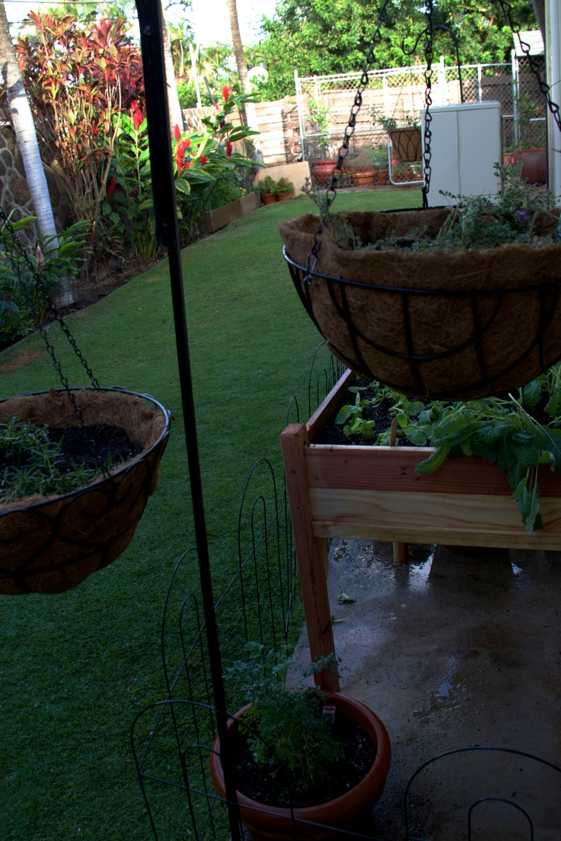 Baskets and Raised Garden Bed
