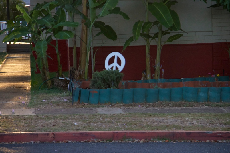 Schoolyard Peace
